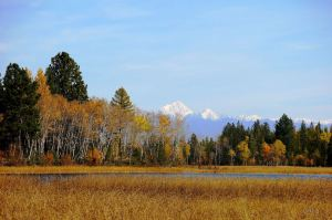 Fisher Peak - Cranbrook, BC. Photo © Charis @ www.charispsallo.wordpress.com, used by permission.